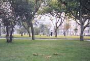 Hangzhou University of Commerce