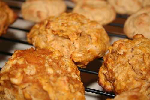 pumpkin peanut butter cookies