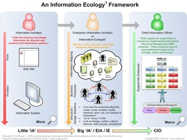 An Information Ecology Framework