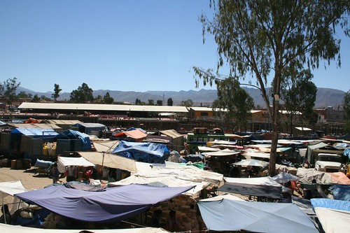The open air market of Tarija
