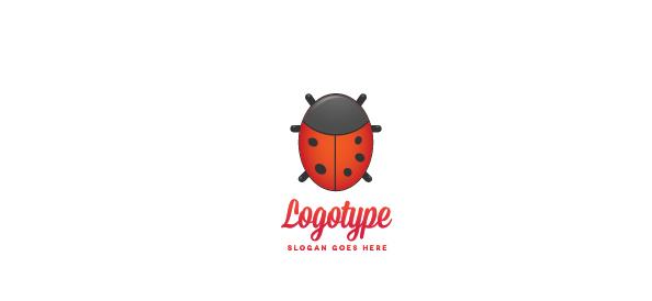 Ladybird Logo Design Template