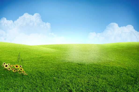 green field fully layered psd file