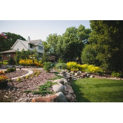 Small Crop Of Great Backyard Landscaping