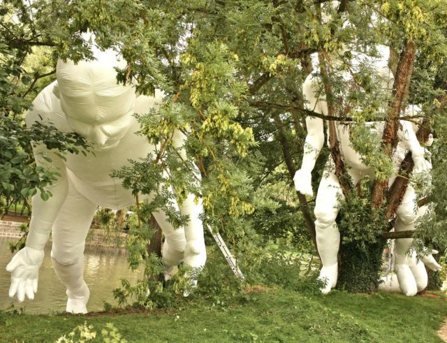 jardin-blanc-6