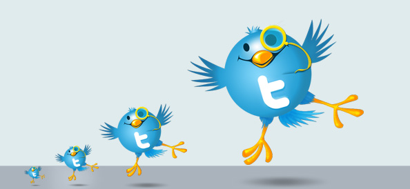 3 Twitter Bird Illustrations Preview Big 3