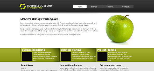 Website CSS Templates  Company Portfolio Template