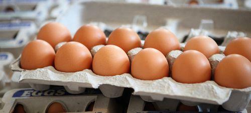 Medium Of Cost Of Eggs