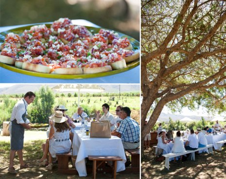Dining below the trees at the Hands on Harvest festival