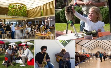 Uncorked festival activities in Franschhoek