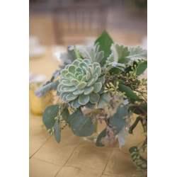 Small Crop Of Winter Wedding Flowers