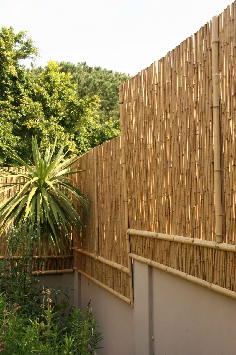 Large Of Bamboo Privacy Screen
