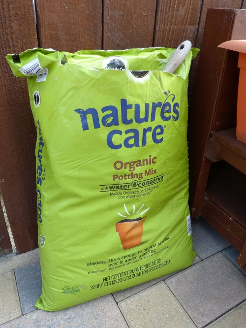 Medium Of Potting Soil Home Depot