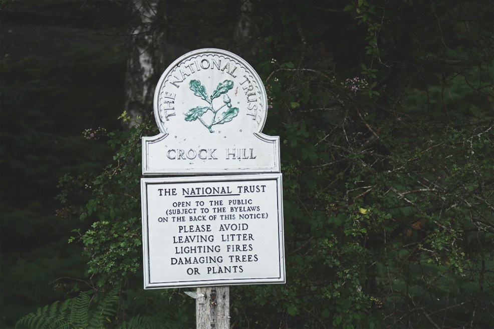 Crock Hill, the New Forest