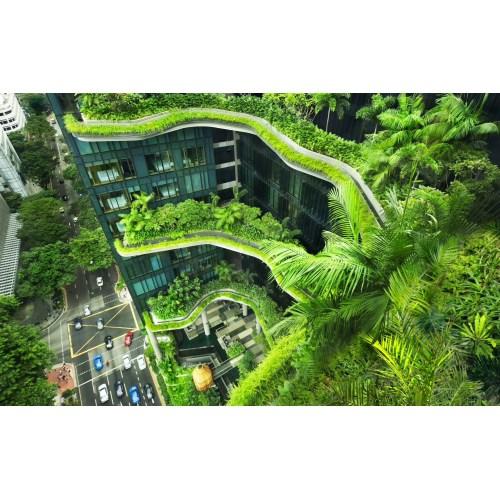 Medium Crop Of Fantasy Garden Designs