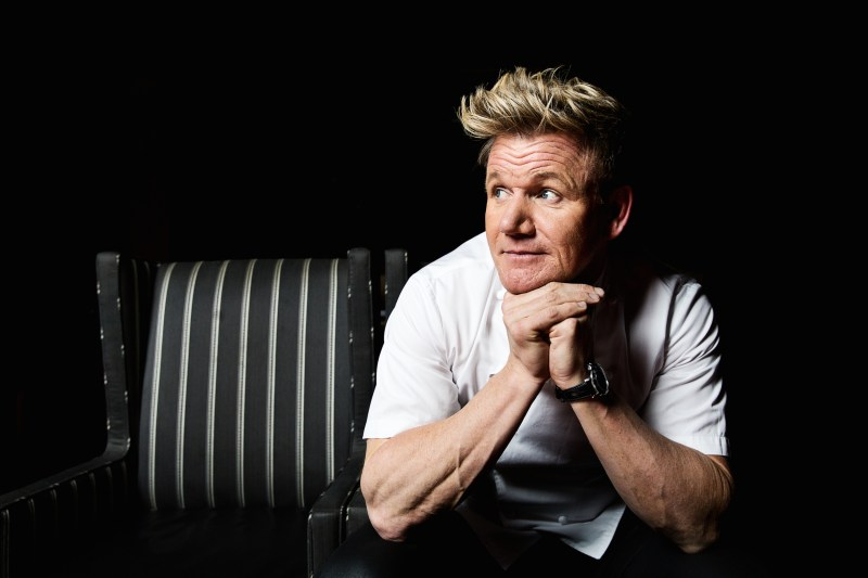 Large Of Gordon Ramsay Ama