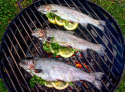 Exciting Trout Are Stuffed Cooking Over Wood Fire Herb Trout Charcoal Grilled Trout Recipes Grilled Trout Fillet Recipes Foil