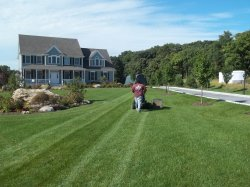 Small Of Big Country Lawn And Landscape