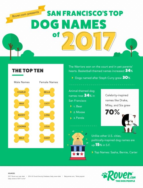 Medium Of German Female Dog Names