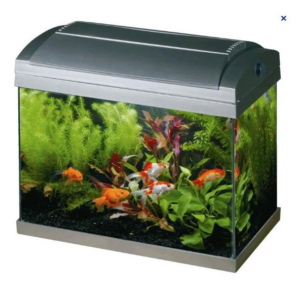 Superfish Aquariums | Superfish Aqua 60