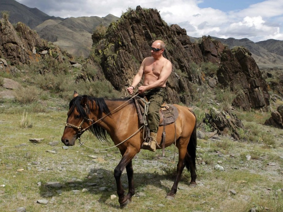 Putin takes in the scenic Siberian wilderness while shirtless on a horse.
