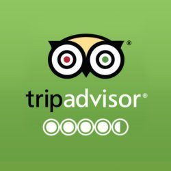 trip advisor reviews for durango restaurant steamworks
