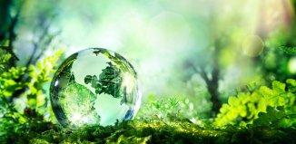 Ecology Career