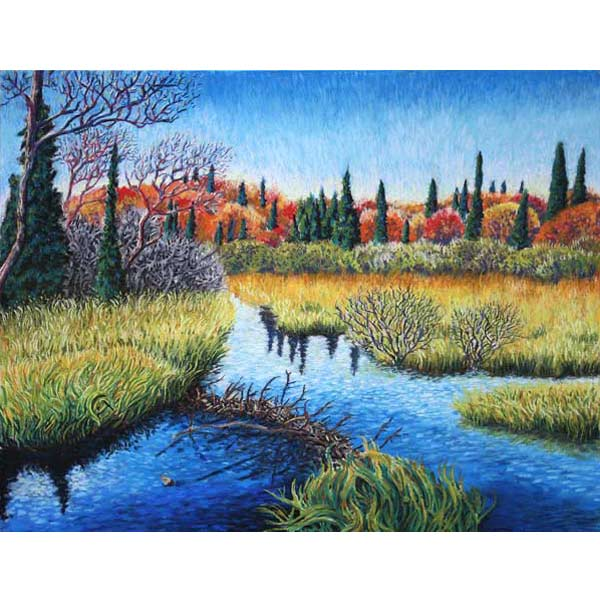 Beavers' Work, a pastel painting by Stephanie Thomas Berry