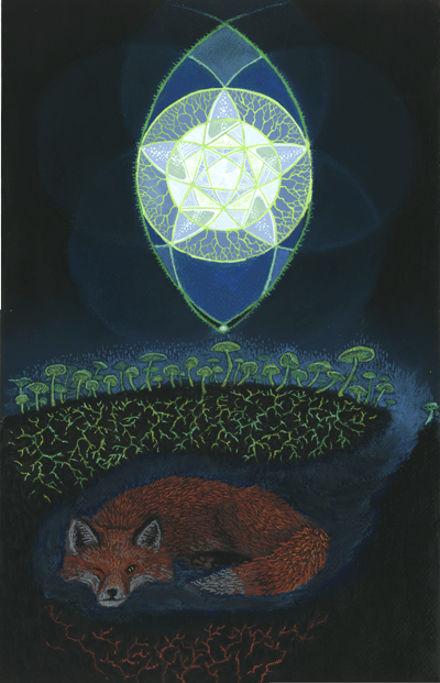 Foxfire! a pastel by Stephanie Thomas Berry featuring a fox, a pentacle, and some foxfire mushrooms