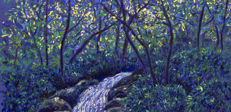 Roaring Fork Falls, Burnsville, NC, pastel on paper by Stephanie Thomas Berry