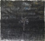 "tree, 2012, charcoal on printed paper, 31""x36"""