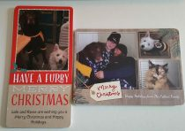 Custom Hallmark Collection Christmas Cards at Walmart