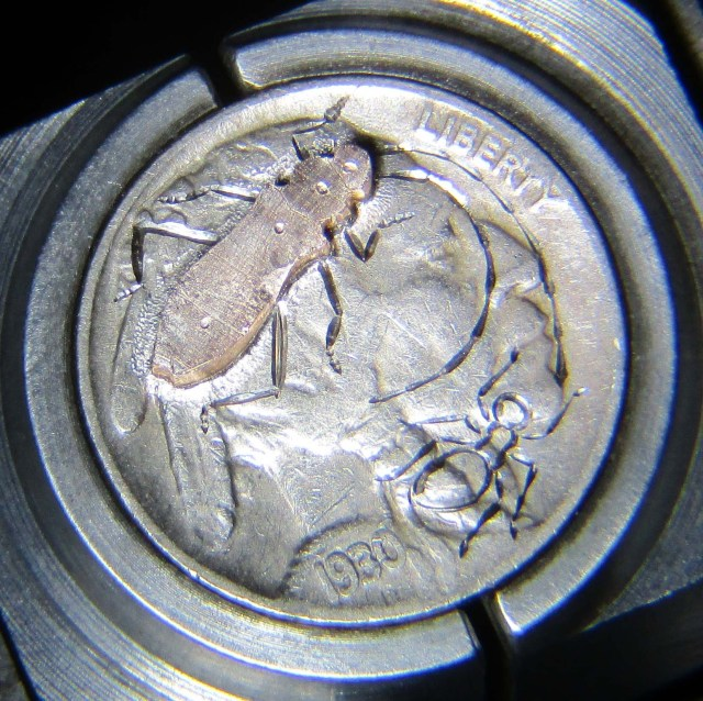 Shibuichi_Longhorn_Beetle_Hobo_Nickel_Tutorial_23