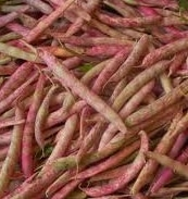 Shell Beans, Cranberry Beans, French Horticultural Beans, Tongue of Fire....