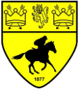 Newmarket_Town_FC
