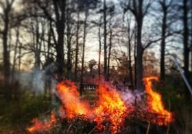 Швеция горит огнем!