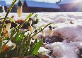 Весна 2016 уже в Стокгольме!