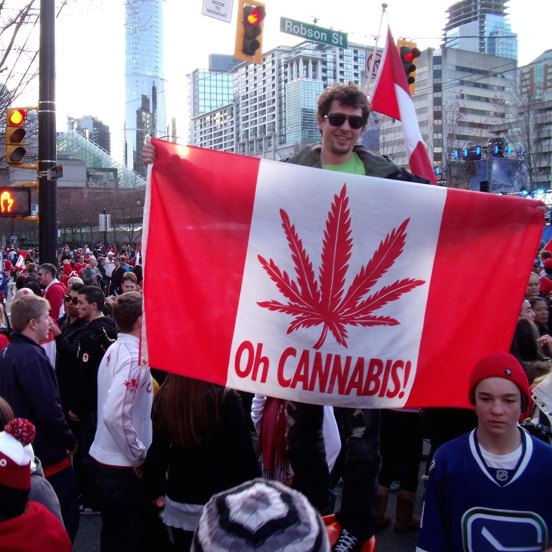 Marihuana: Canadá analiza legalizar su uso recreativo en 2017