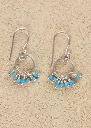 Jill's Earrings in Turquoise