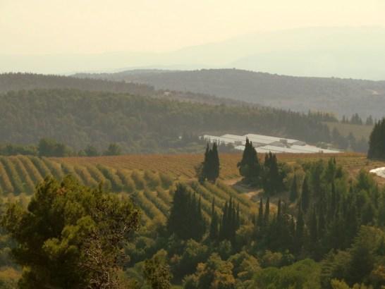 Israel's Tuscany