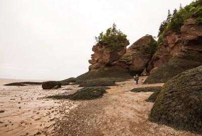 Canada-Fundy-1-27