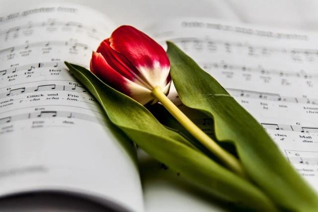 music-999135_1280