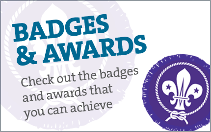 badgesandawards