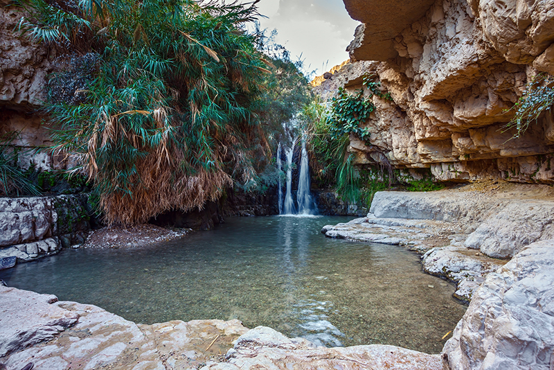 Beautiful waterfall and small scenic pond with clear water. The