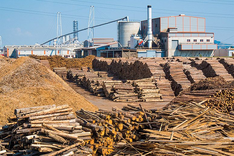 Holindustrie Schweighofer's main factory in Sebes, Romania. (Photo: Environmental Investigation Agency)