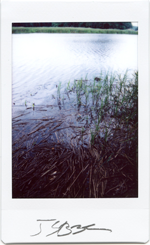 Instant photograph - Old Lyme, Ct. Ct. River- Strazza 3