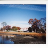 Instant Photographs Series 4