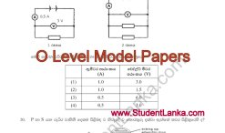 o-level-model-papers-2016