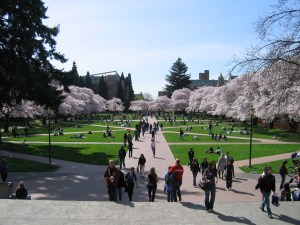 university_of_washington_quad_spring_2007