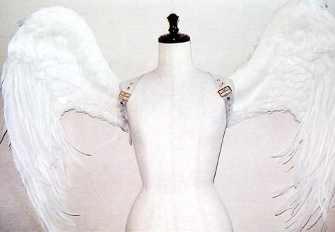 wing031-f
