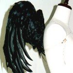 wing037-s
